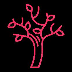 Trust Tree Designs